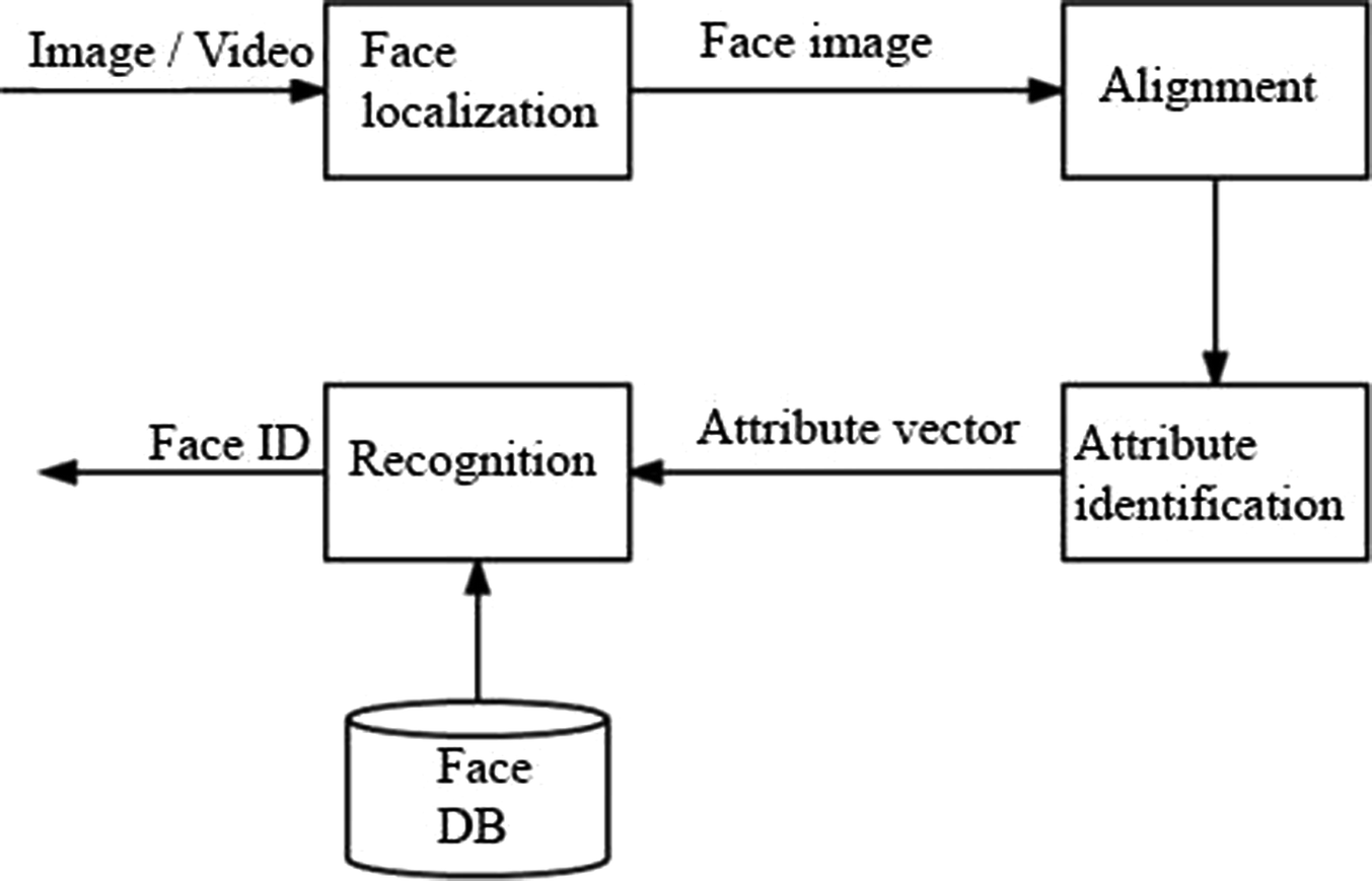 The Software System for Solving the Problem of Recognition