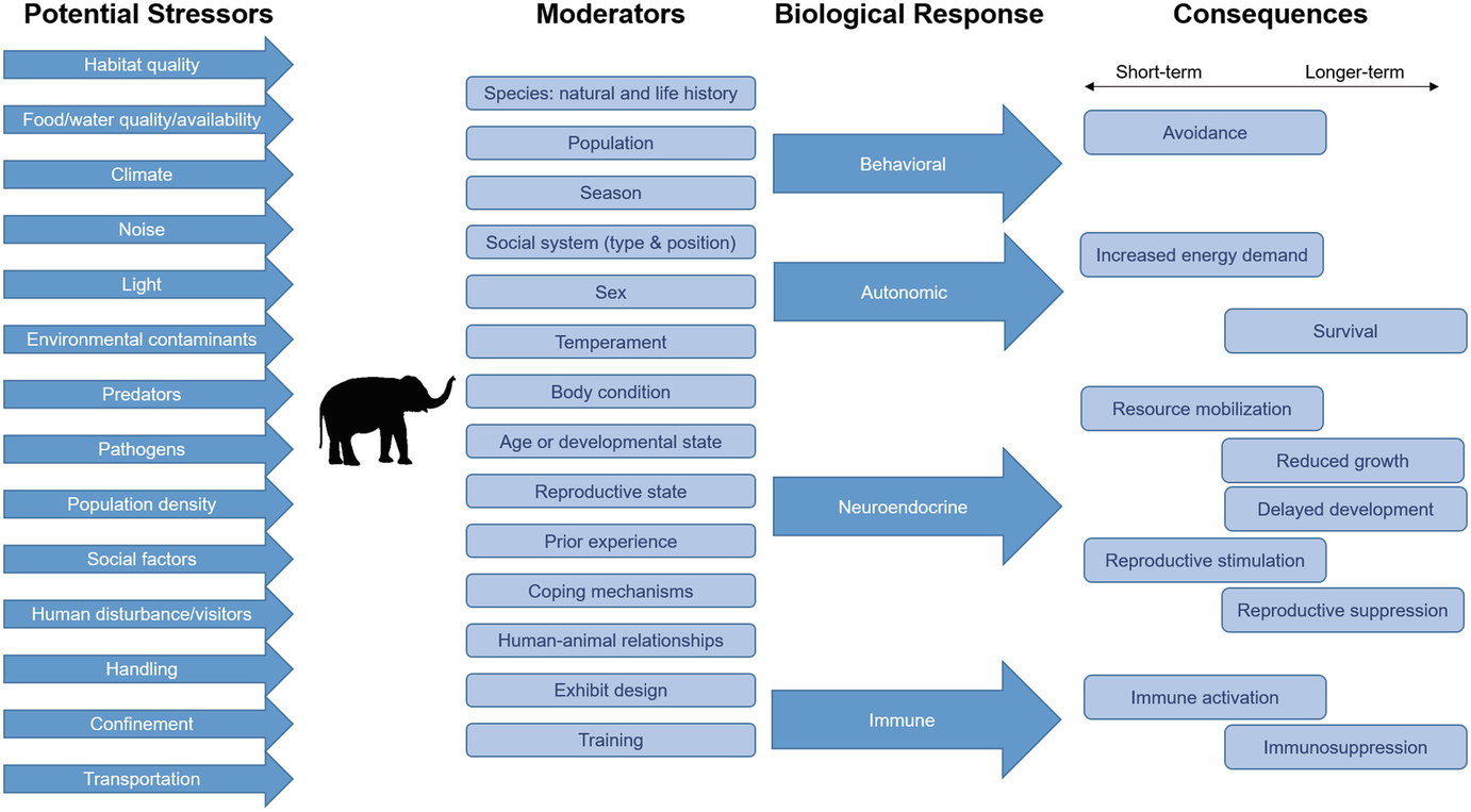 Stress, Well-Being and Reproductive Success | SpringerLink