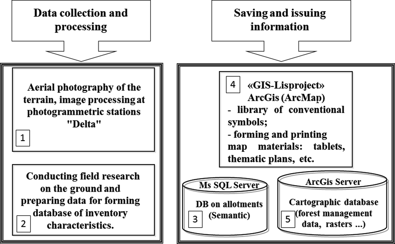 Geoinformation Technology of Data Processing in the Forestry
