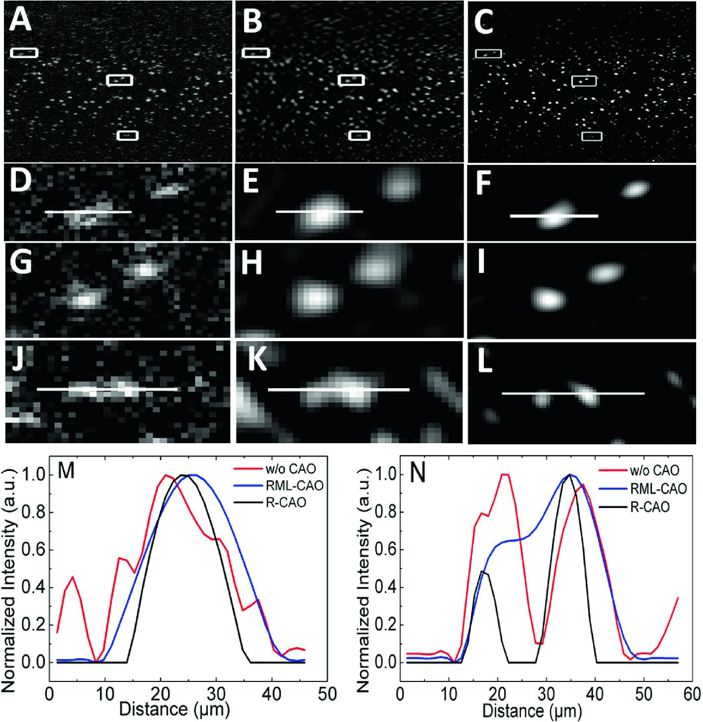 A Random Field Computational Adaptive Optics Framework for Optical