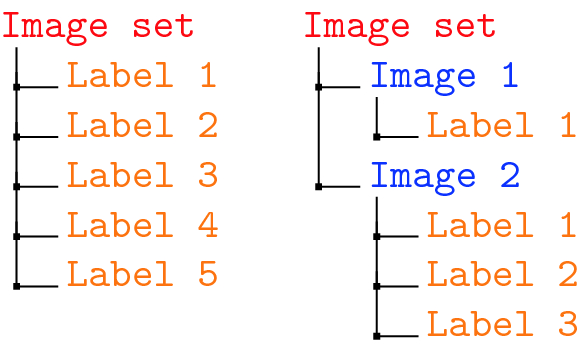 ImageTagger: An Open Source Online Platform for