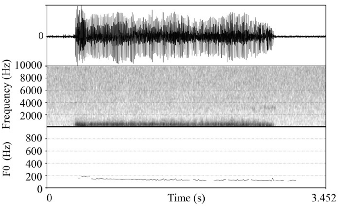 Phonetic Variation in Cat–Human Communication | SpringerLink