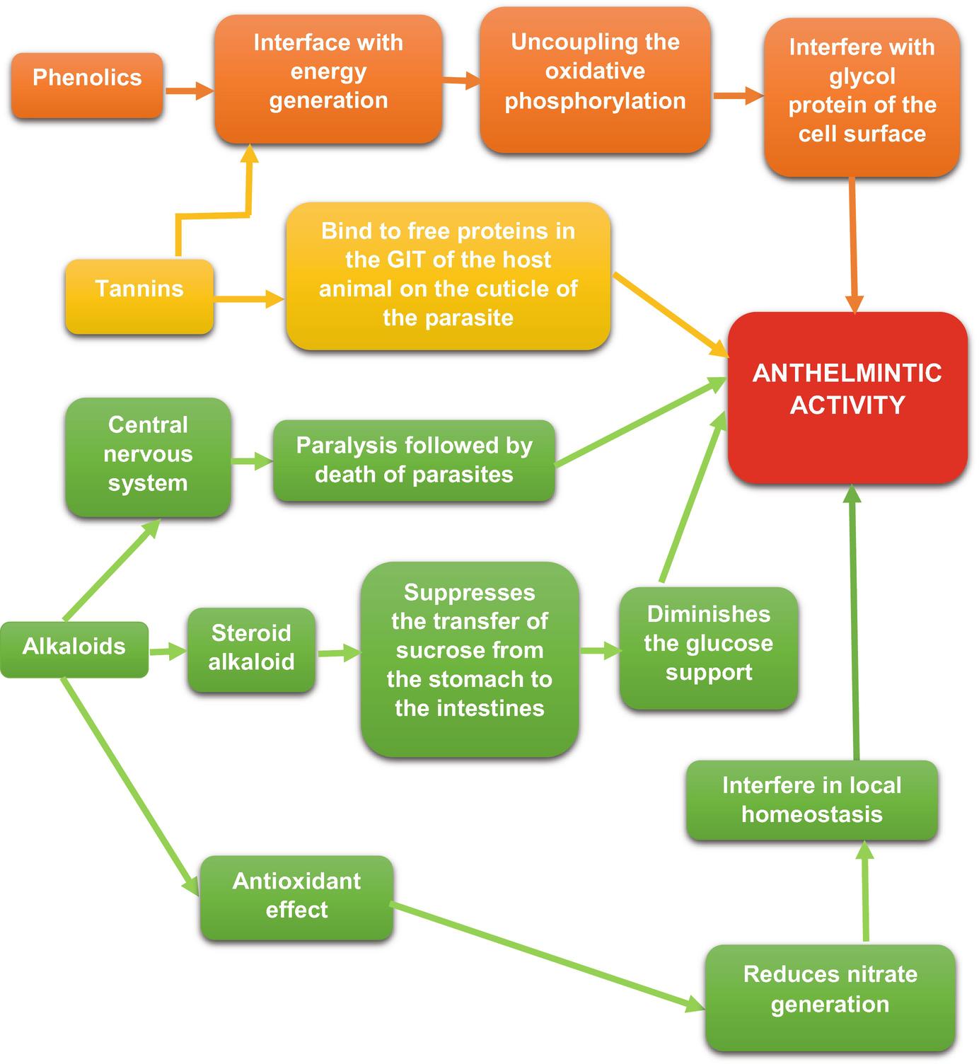 akut helminthiasis