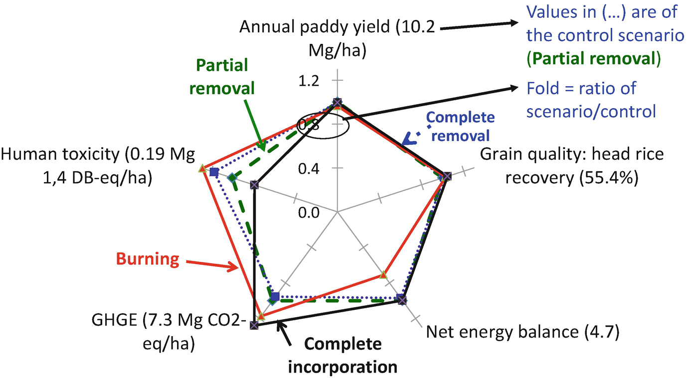 Life Cycle Assessment Applied in Rice Production and Residue ...