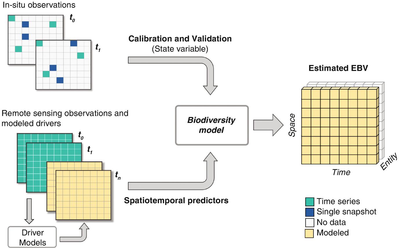 Essential Biodiversity Variables Integrating In Situ Observations ...