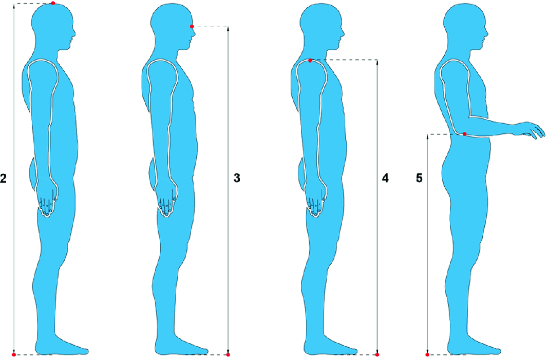 Elements Of Anthropometry Springerlink