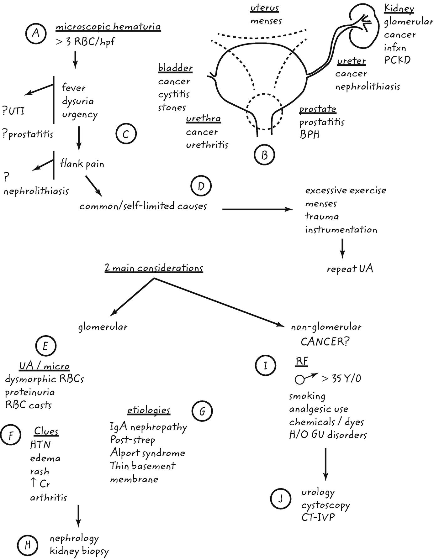 Isolált haematuria