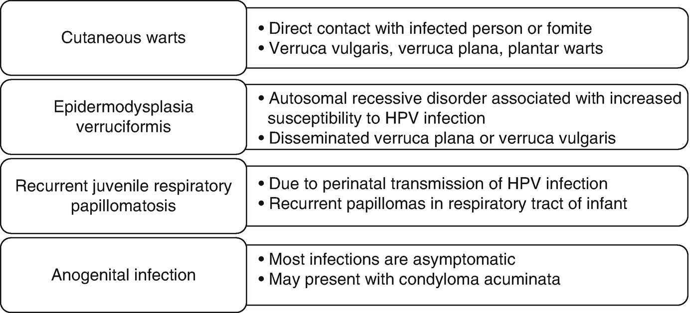 Papillomavirus manifestation
