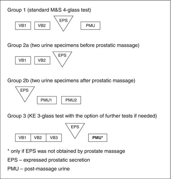 Phytotherapy a prostatitis Krónikus prosztatitis az ICD 10- en