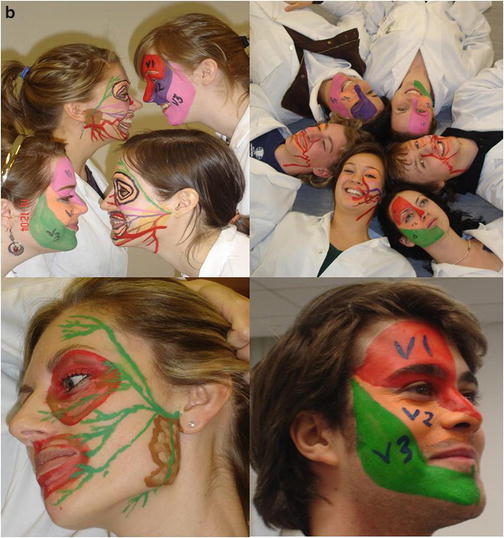 Using Body Painting And Other Art Based Approaches To Teach Anatomy Springerlink