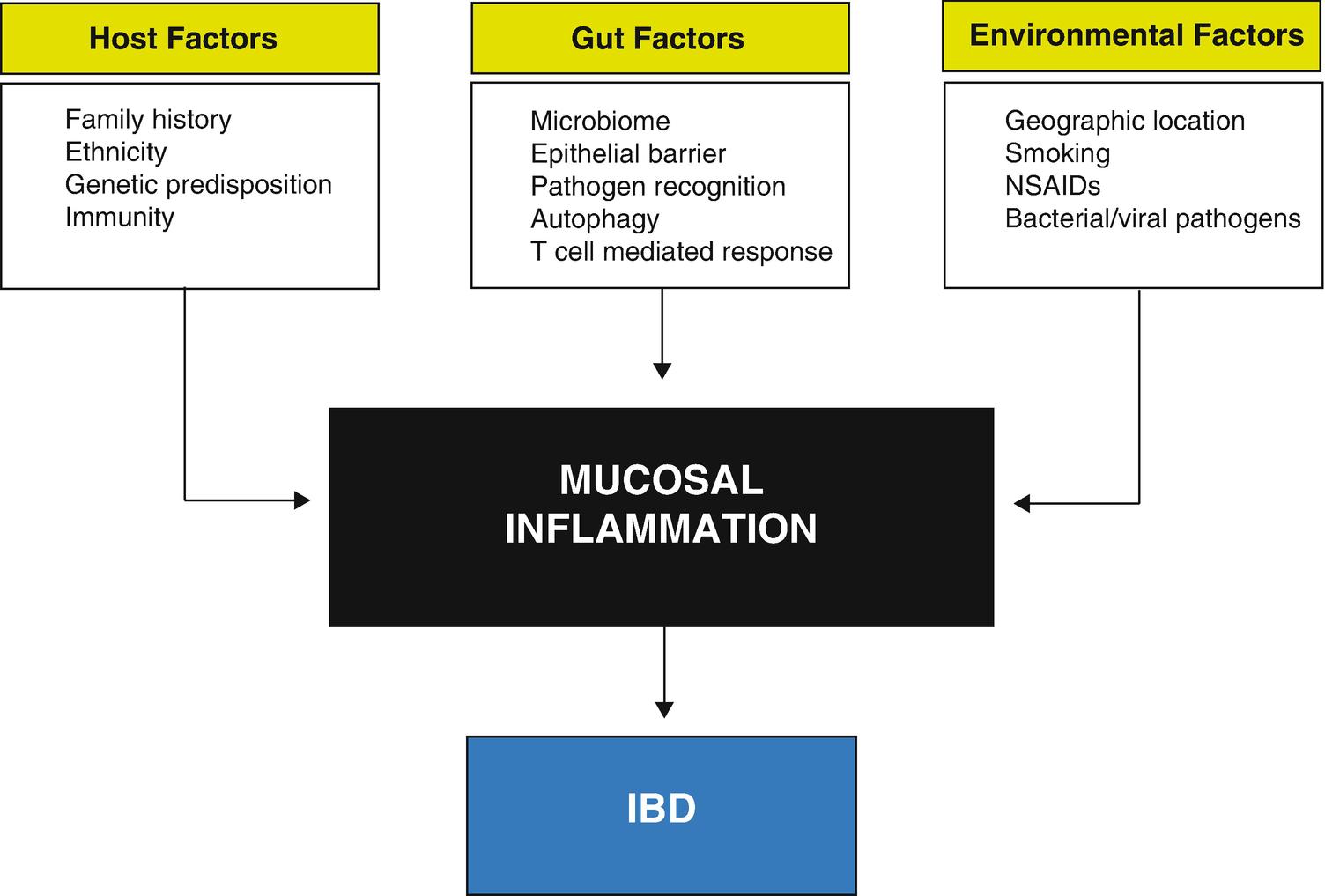 Inflammatory Bowel Disease: Pathobiology   SpringerLink
