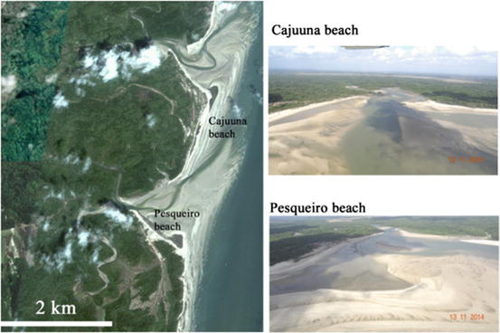Beaches of the amazon coast amap and west par springerlink open image in new window fandeluxe Images