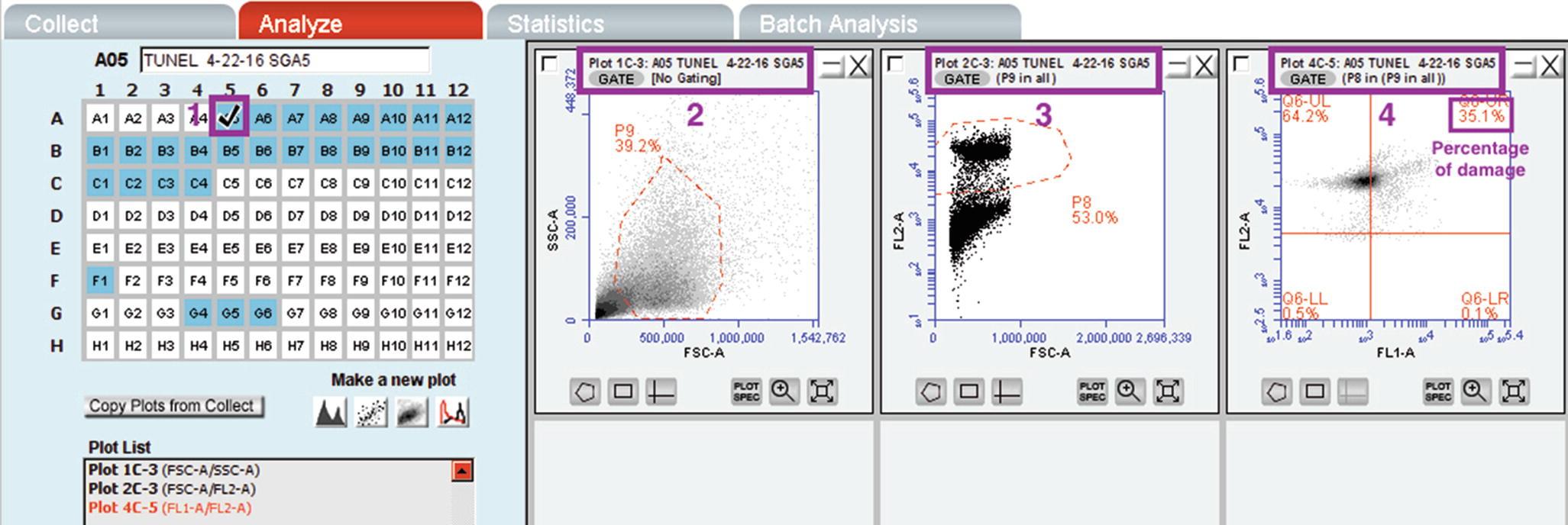 Assessment of Sperm Chromatin Damage by TUNEL Method Using ...