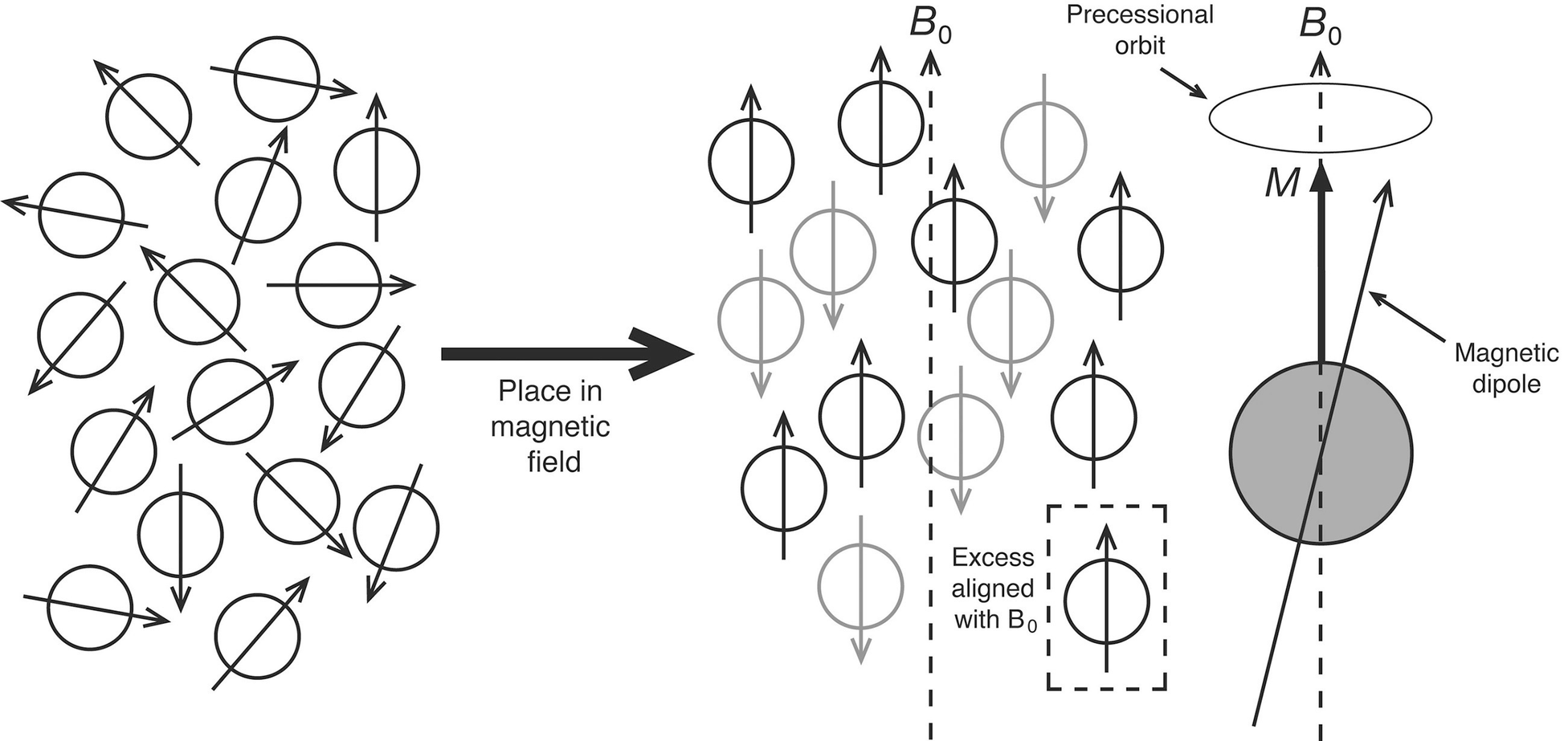 Nuclear Magnetic Resonance Springerlink