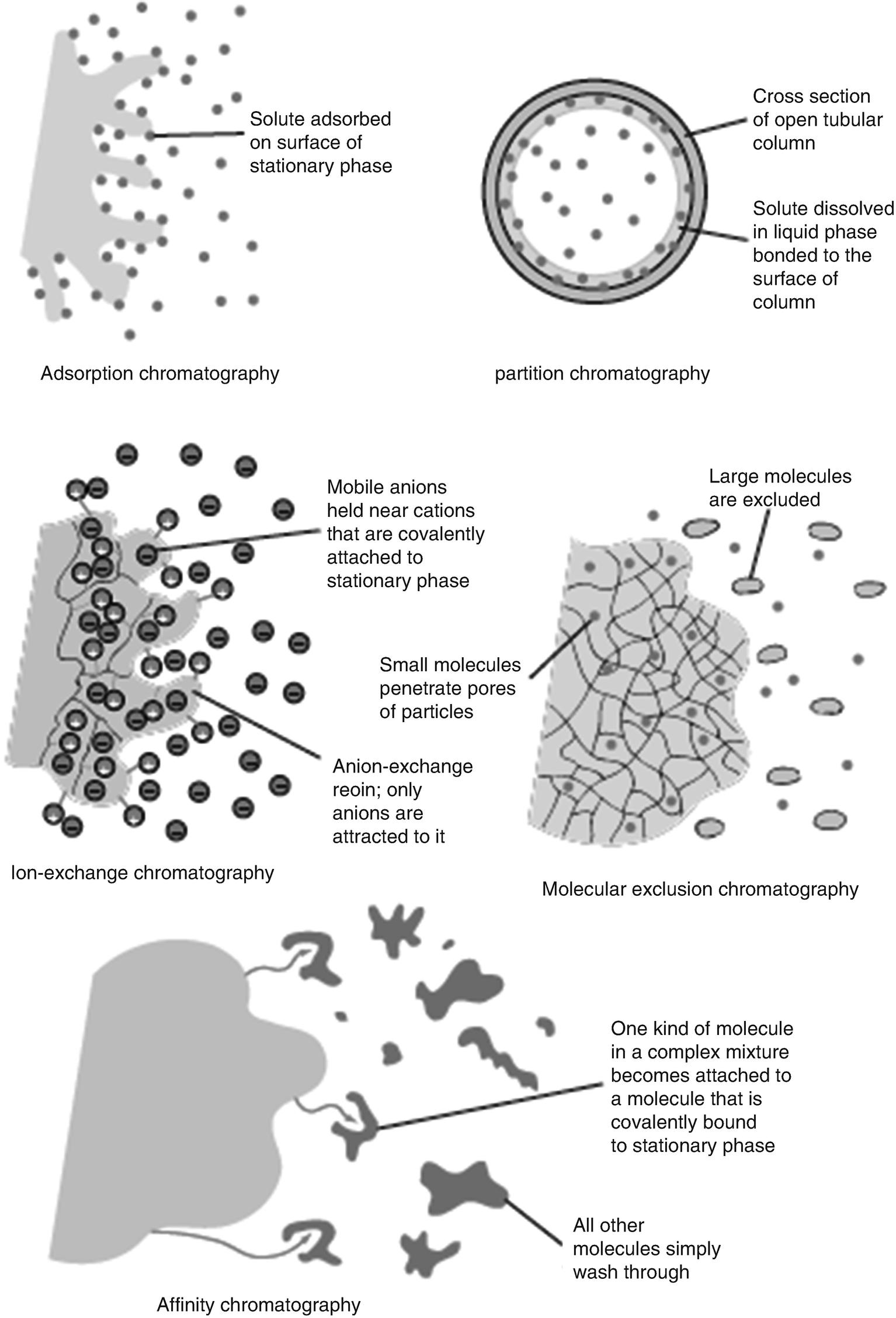 Basic Principles of Chromatography | SpringerLink