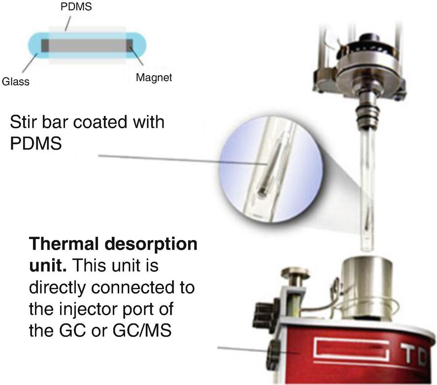 Gas Chromatography | SpringerLink