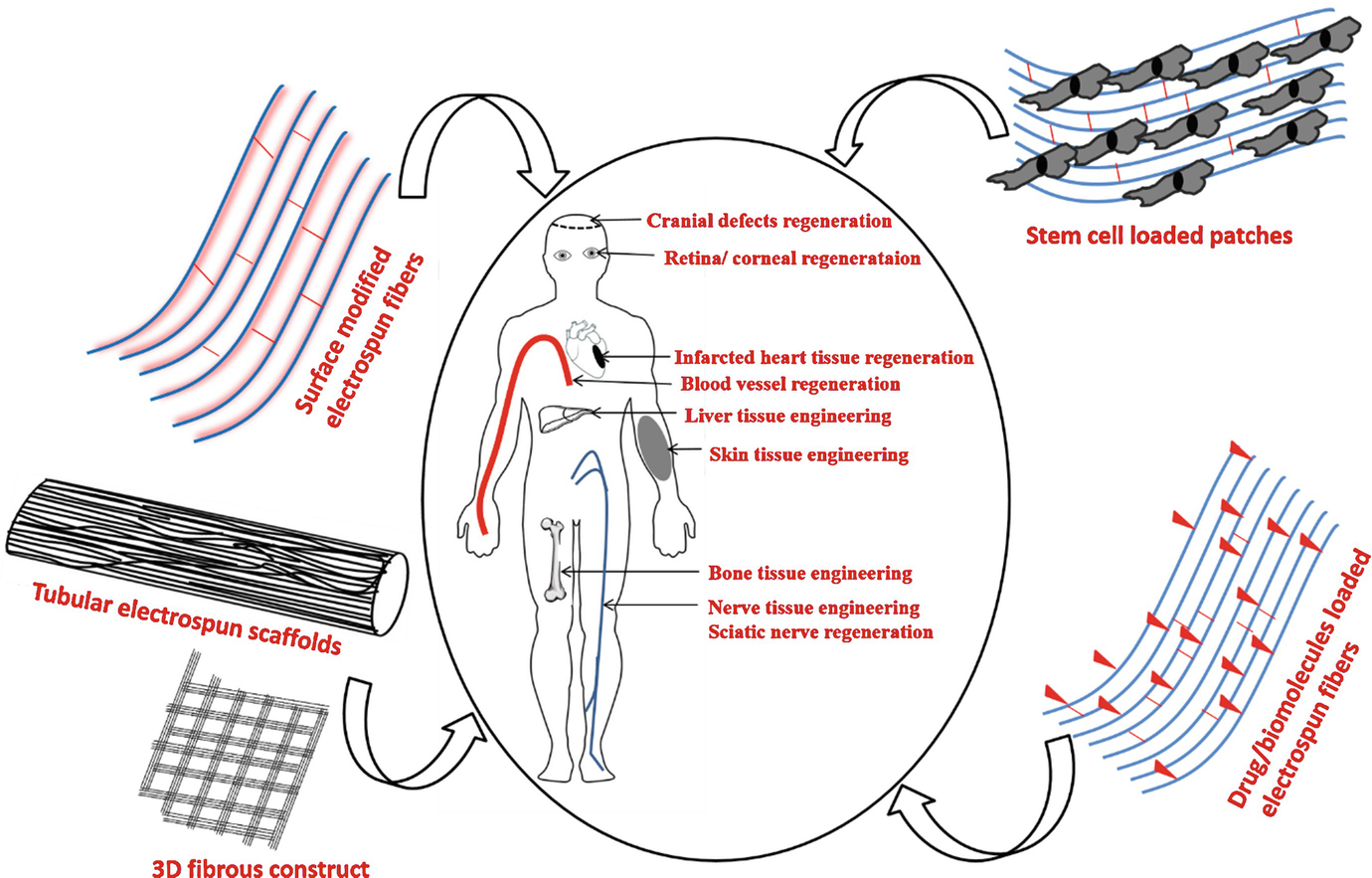 Nanofibrous Scaffolds for Tissue Engineering Application