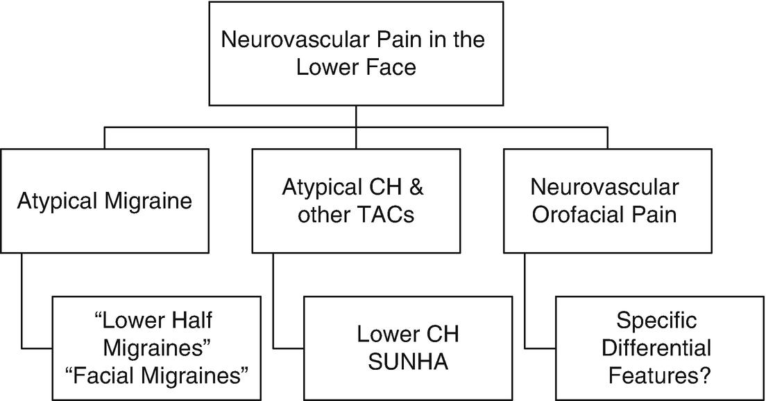 Neurovascular Orofacial Pain | SpringerLink