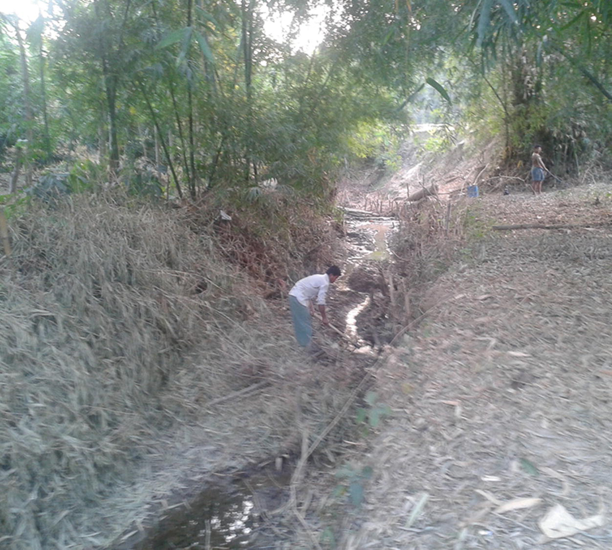 Major Environmental Issues and Problems of South Asia