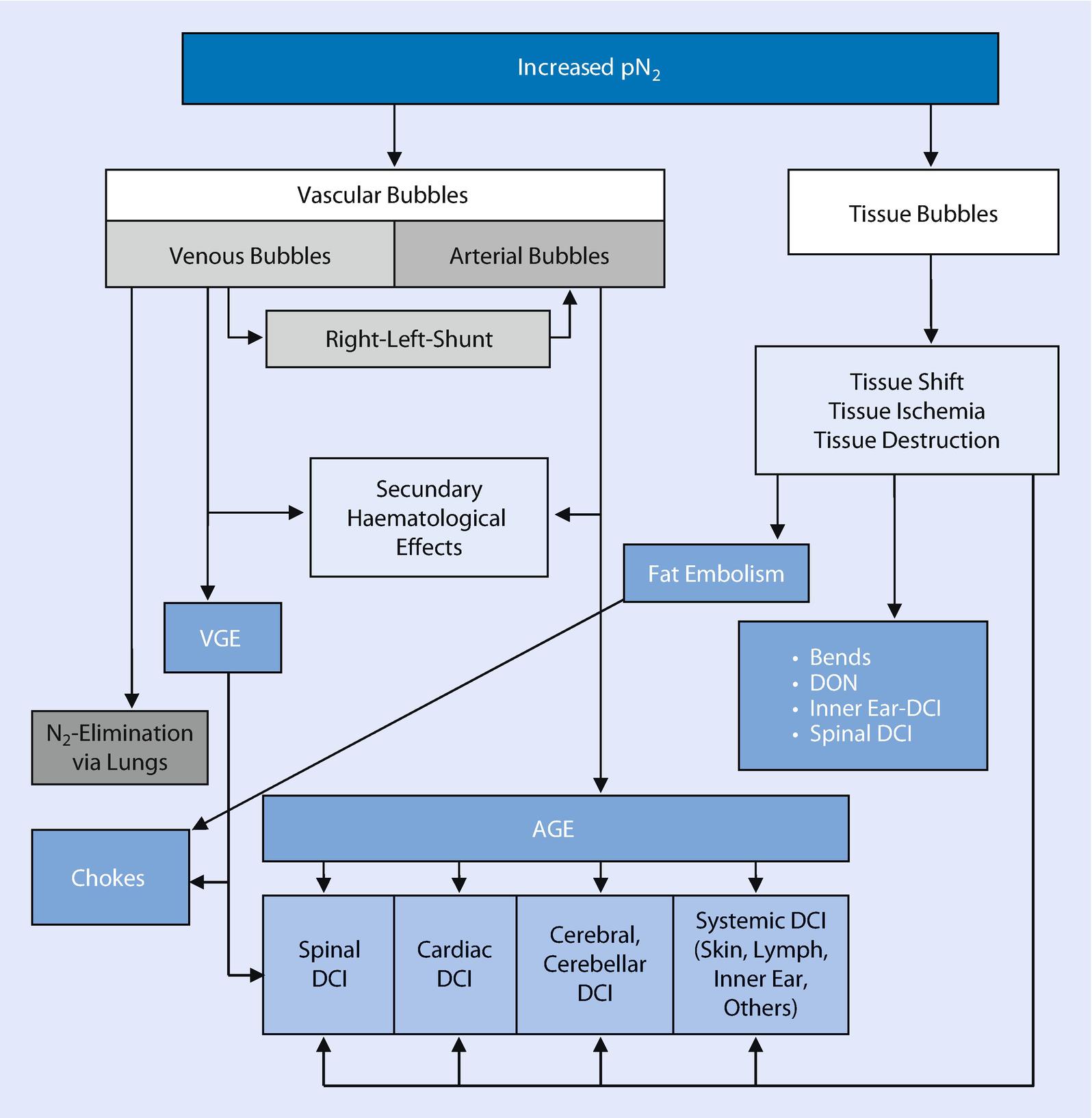 Decompression Illness (DCI) | SpringerLink