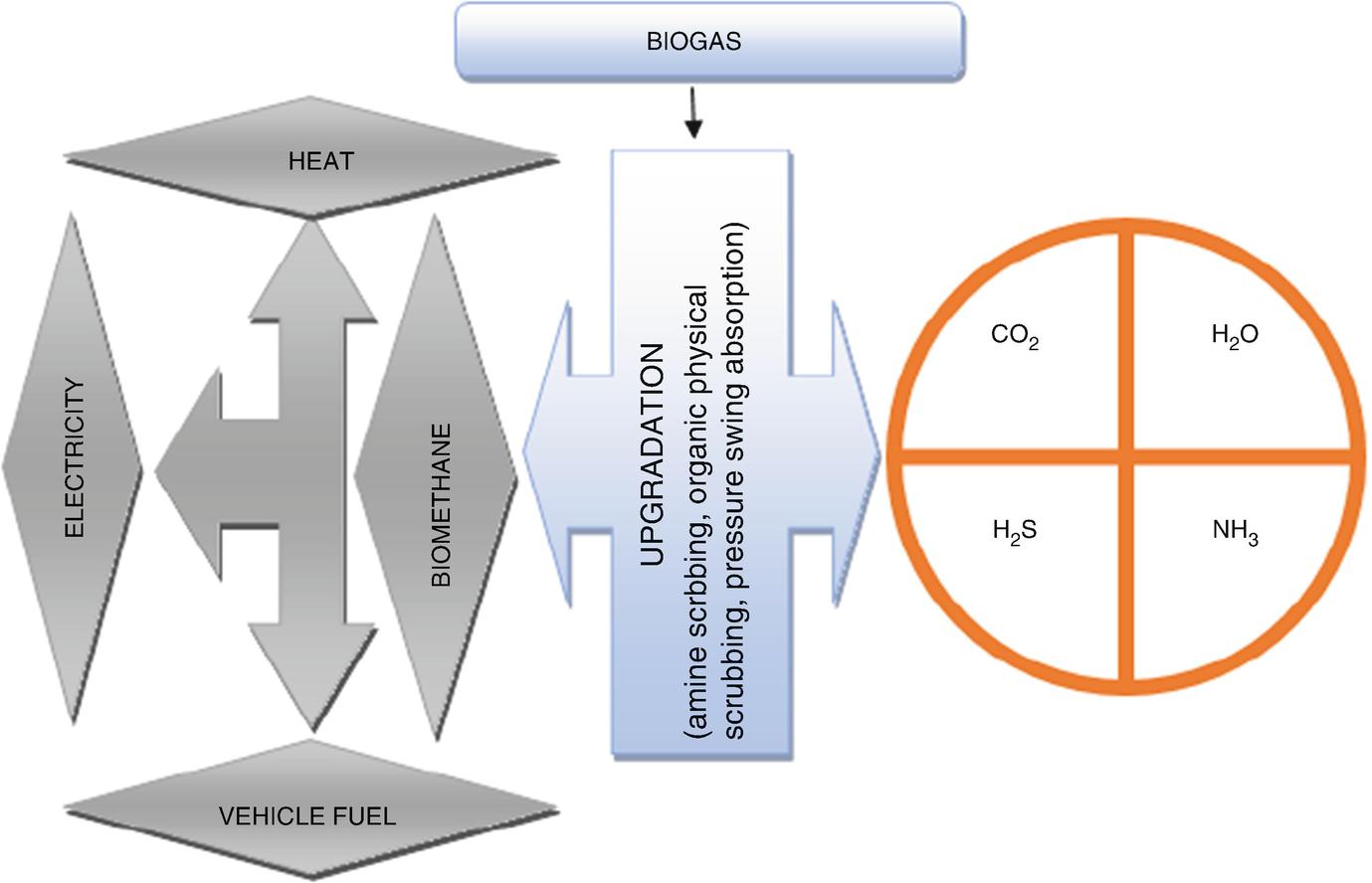 Conversion Of Lignocellulosic Feedstocks Into Biogas Springerlink Digester Construction Diagram Systematic Fig 78 Upgradation And Utilization