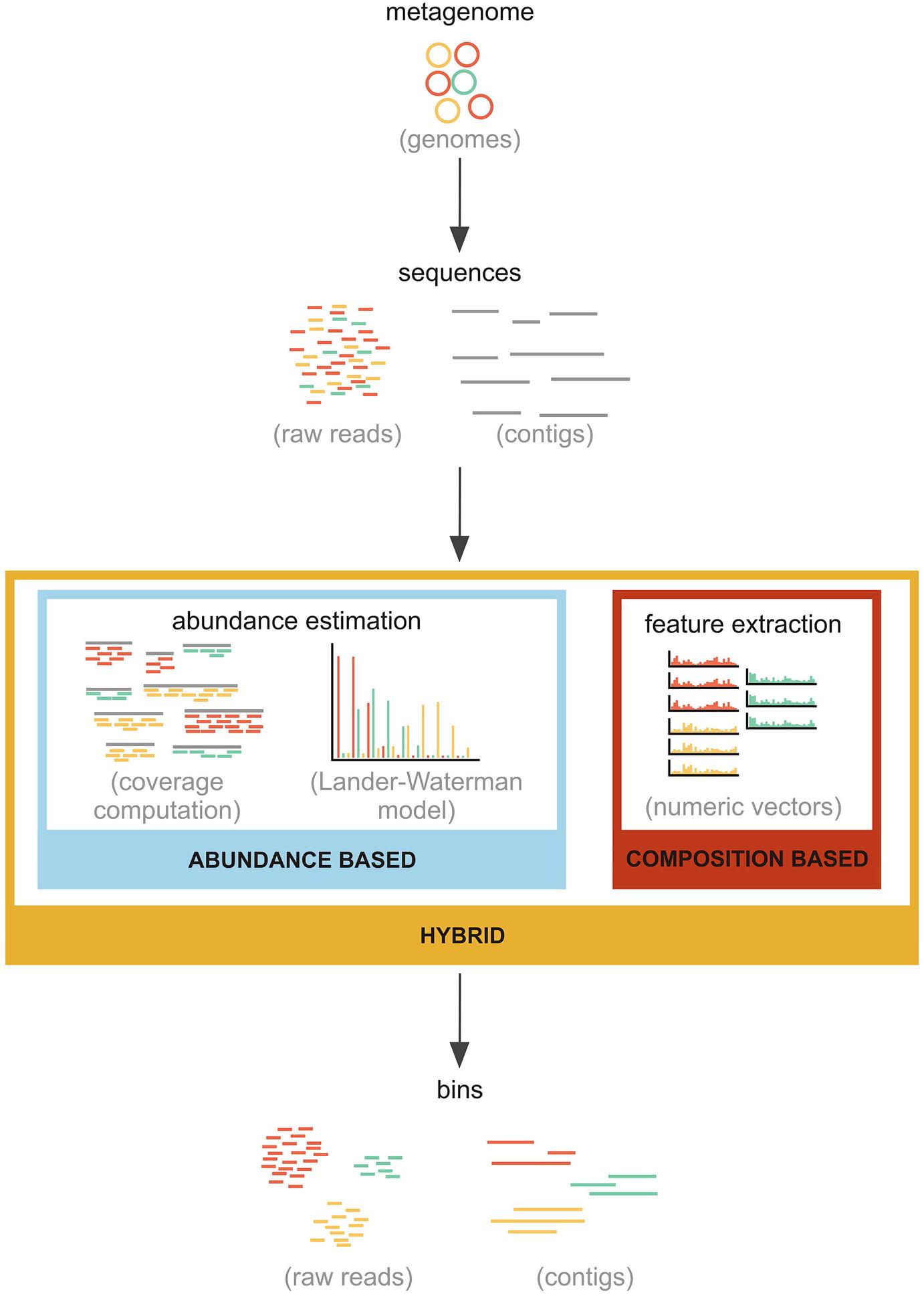 Analysis Methods for Shotgun Metagenomics | SpringerLink