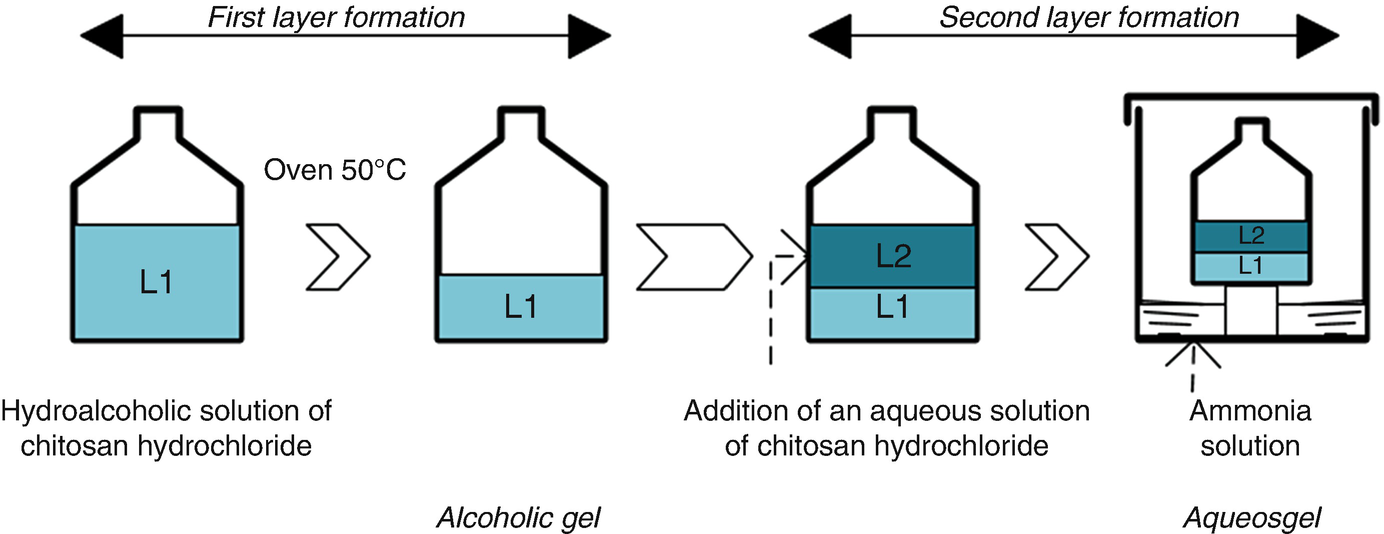 Techno-Economic Analysis of Chitosan-Based Hydrogels