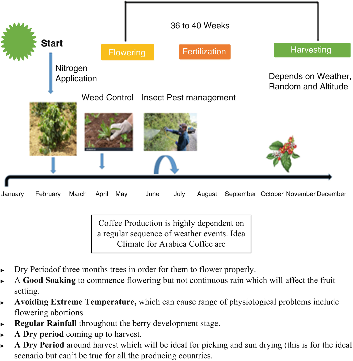 """f6b78d523d2 Coffee Bean-Related"""" Agroecological Factors Affecting the Coffee ..."""