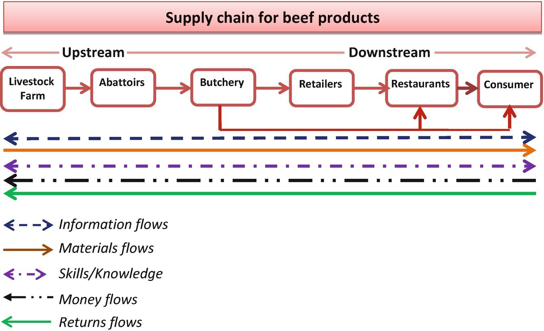 Supply Chain Network and Logistics Management | SpringerLink