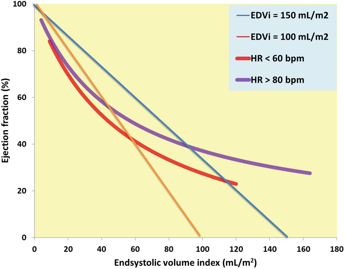 Sex- and Age-Related Reference Values in Cardiology, with