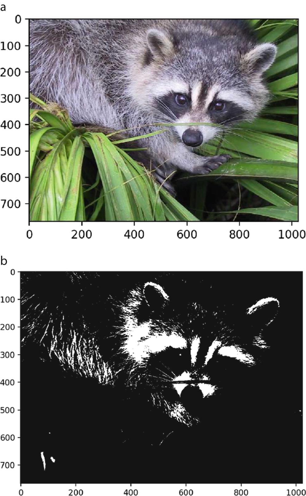 Image Processing with Python   SpringerLink