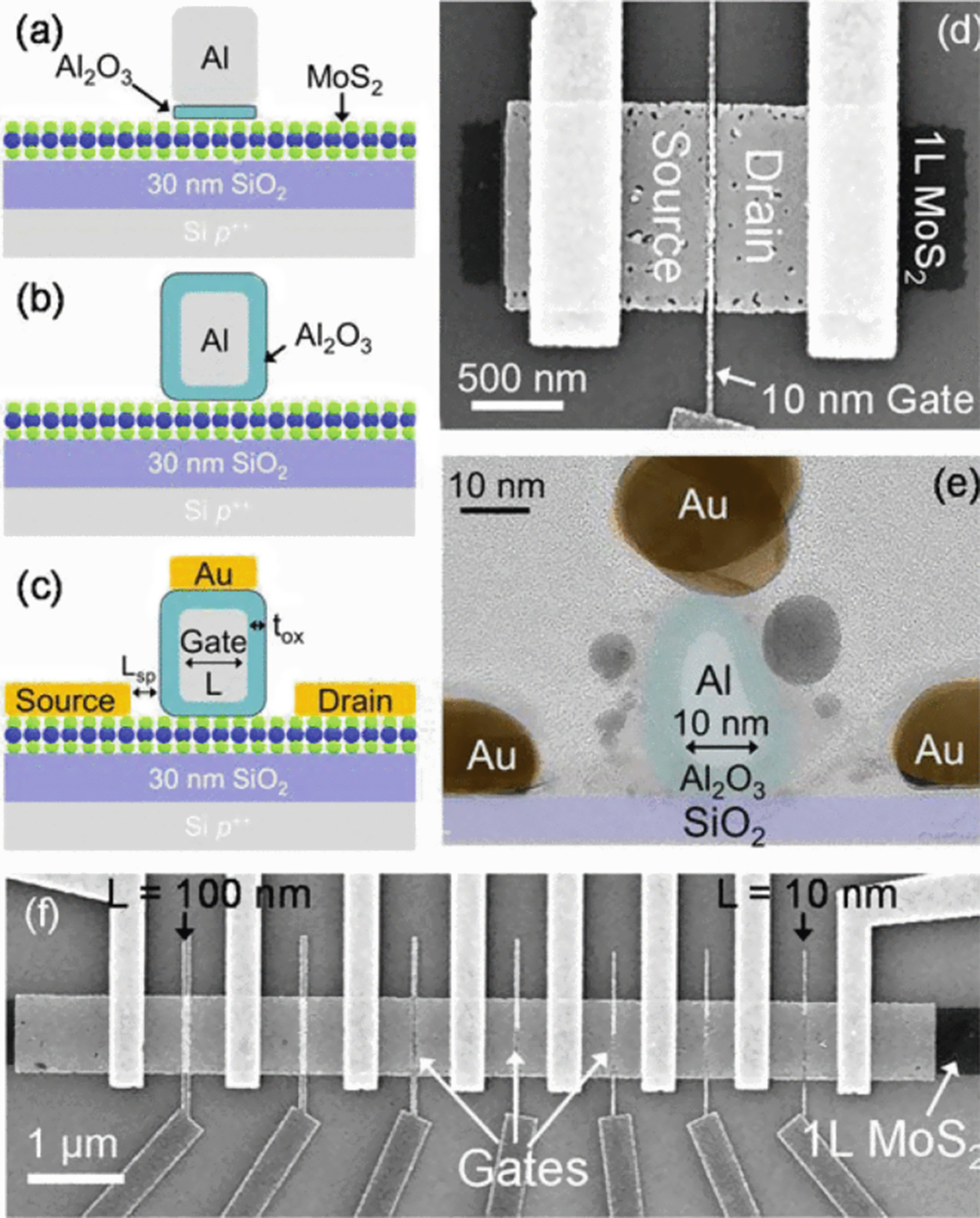 Heterogeneous Integration Of 2d Materials And Devices On A Si Other Circuits Gt Keypad Combination Lock Circuit Open Image In New Window