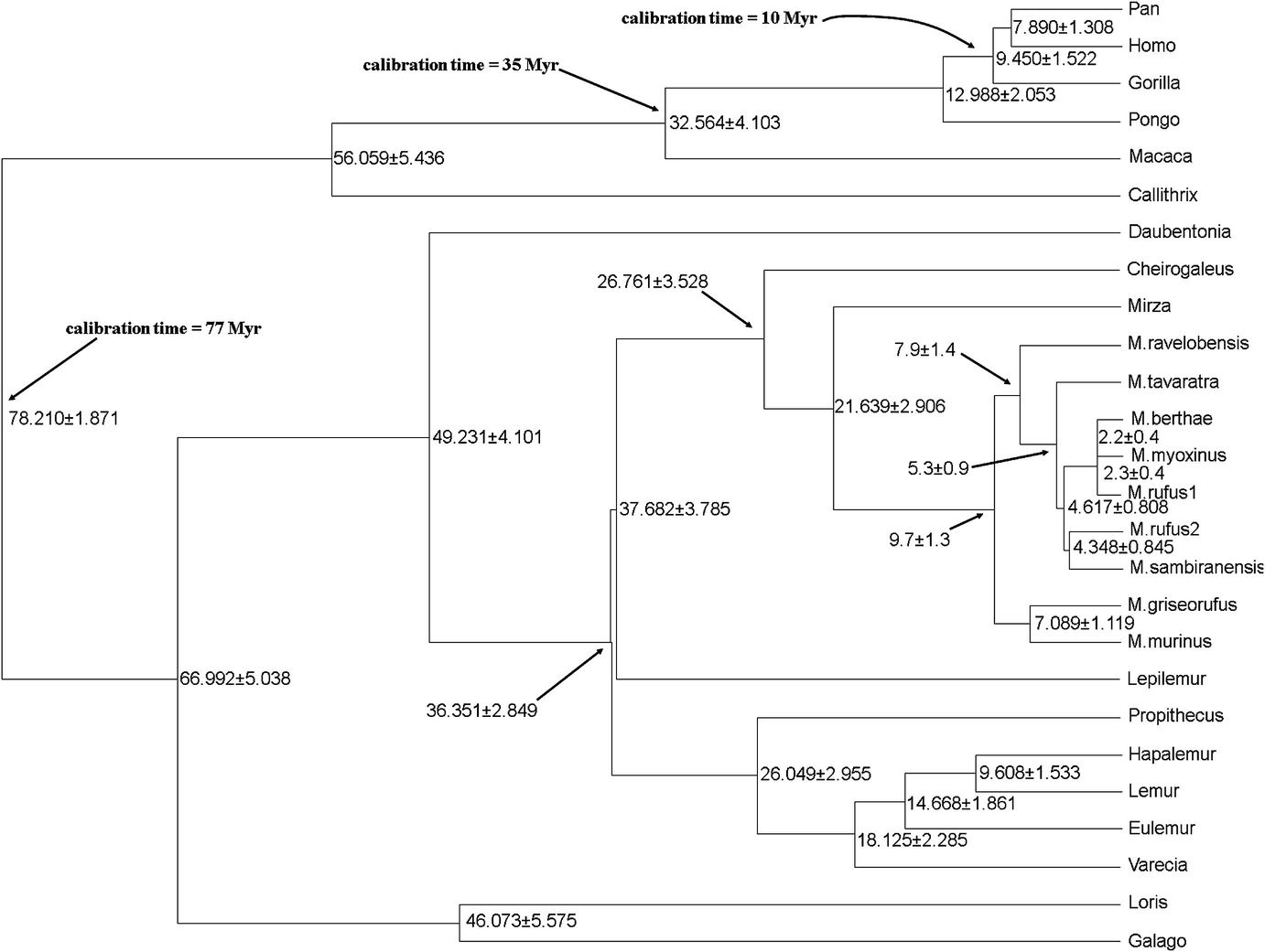 Distance based phylogenetic methods springerlink open image in new window fandeluxe