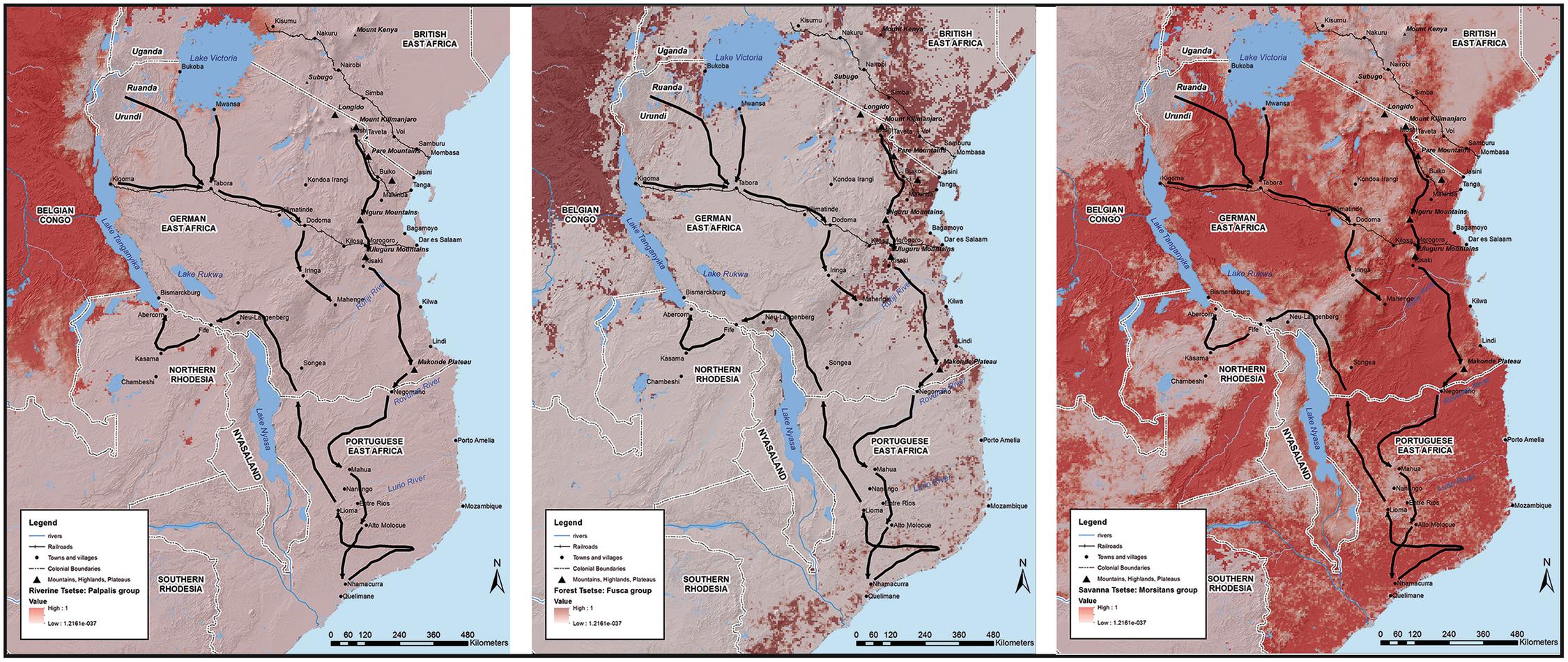 East africa in world war i a geographic analysis springerlink open image in new window fandeluxe Gallery