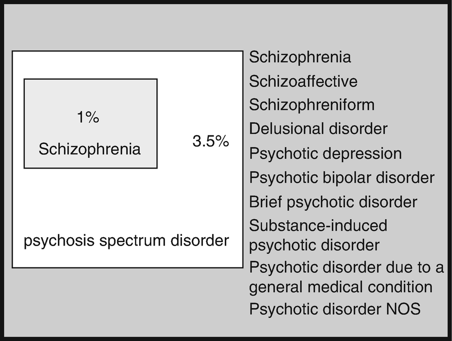 Psychotic Disorders Due to Traumatic Brain Injury (PD-TBI