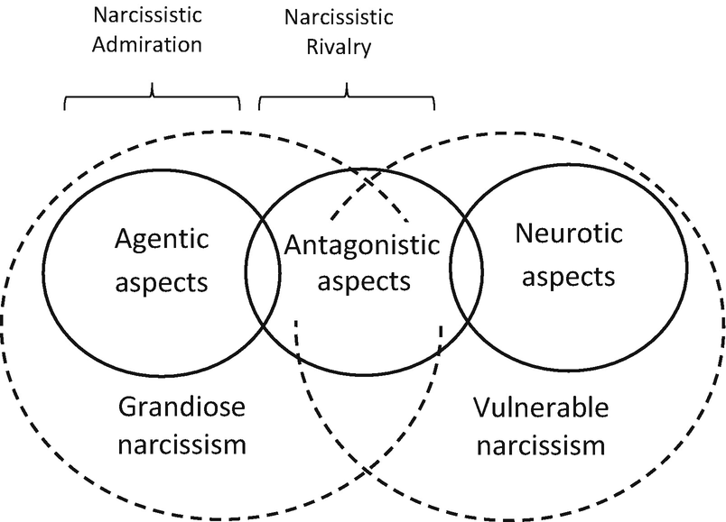 The Narcissistic Admiration and Rivalry Concept | SpringerLink