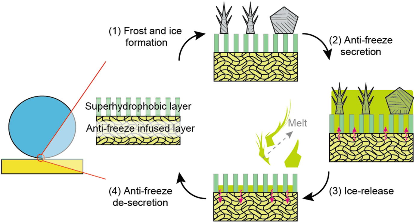 melting ms frost epub free download