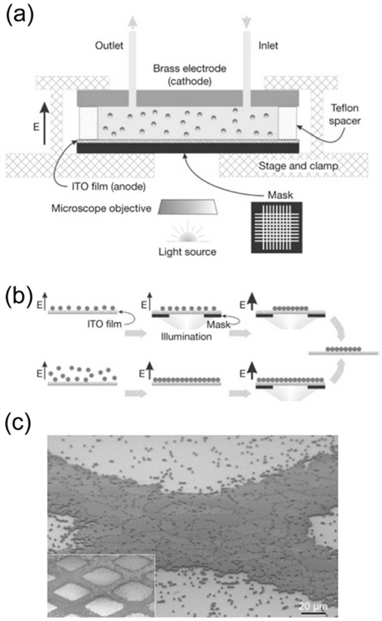 Electric-Responsive Superwetting Surface | SpringerLink on
