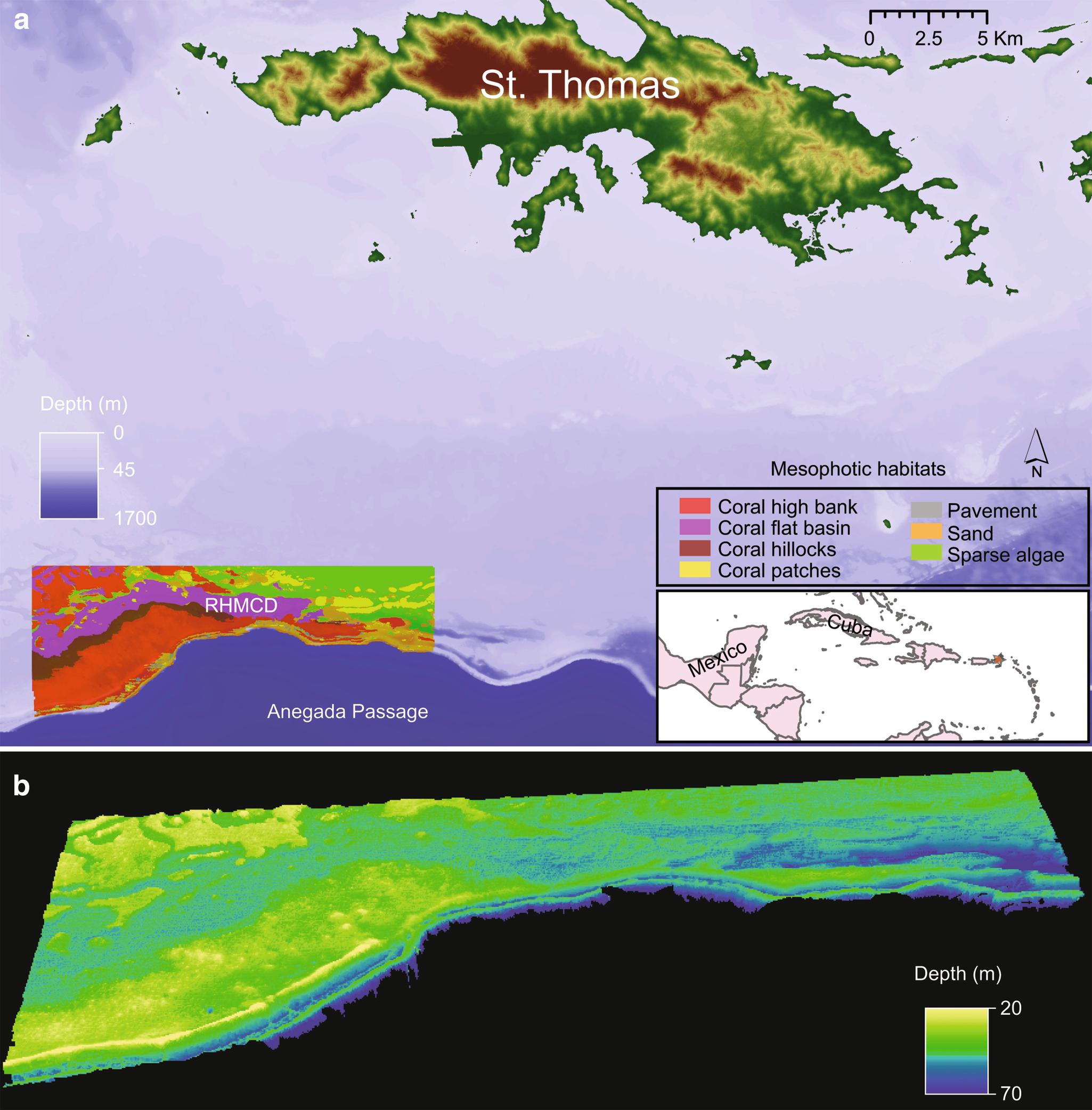 Geology and Geomorphology | SpringerLink