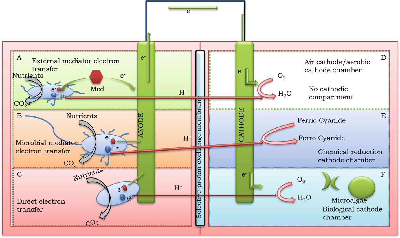 Microbial Fuel Cells: Fundamentals, Types, Significance and