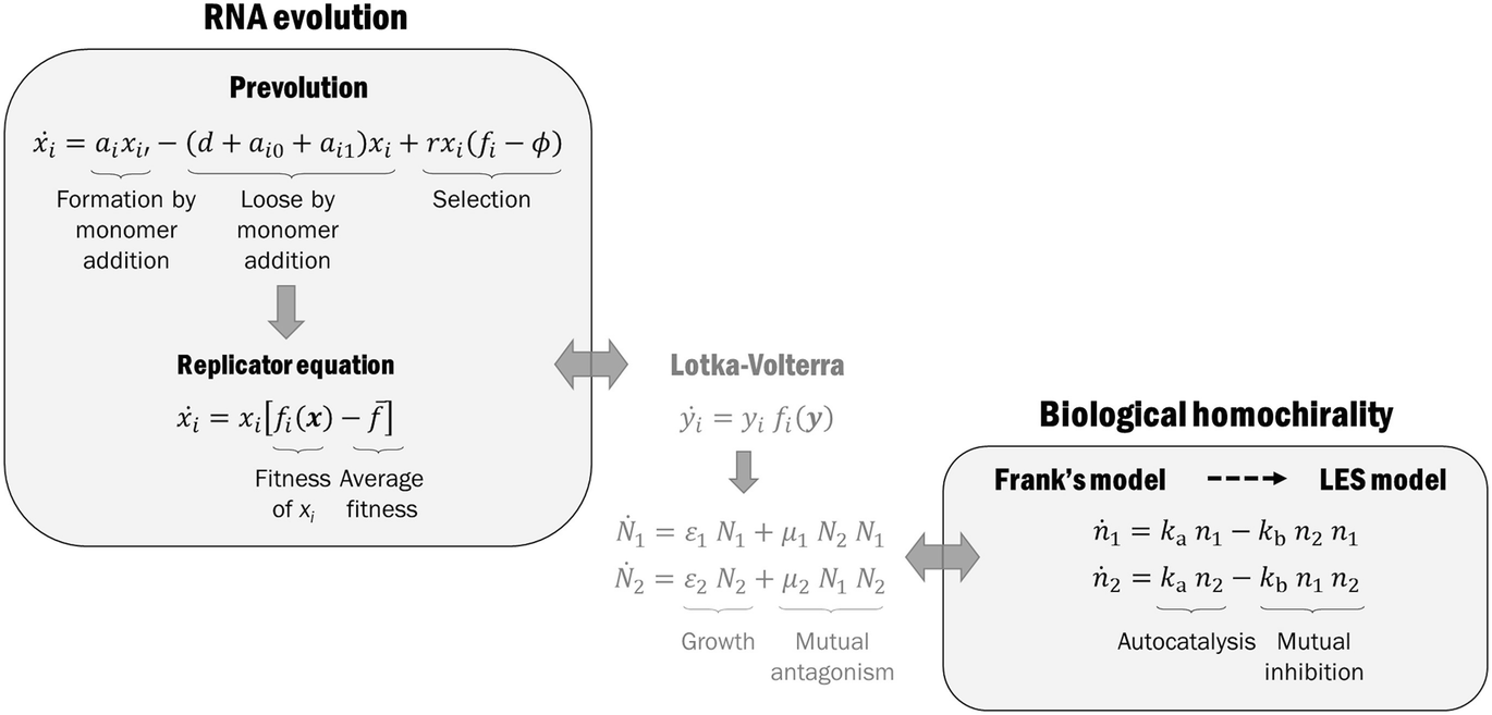 Connections Between Mathematical Models Of Prebiotic Evolution And The Followingsystem Diagram Illustrates A Typical Configuration Open Image In New Window