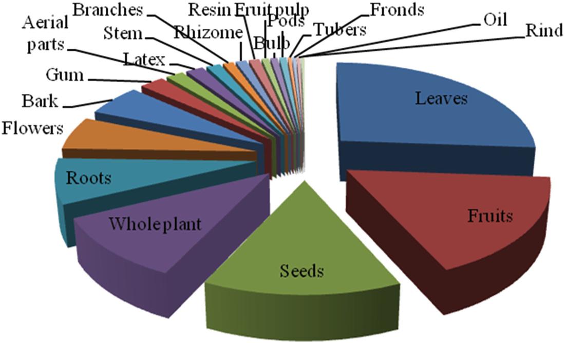 Antidiabetic Plants of Pakistan | SpringerLink