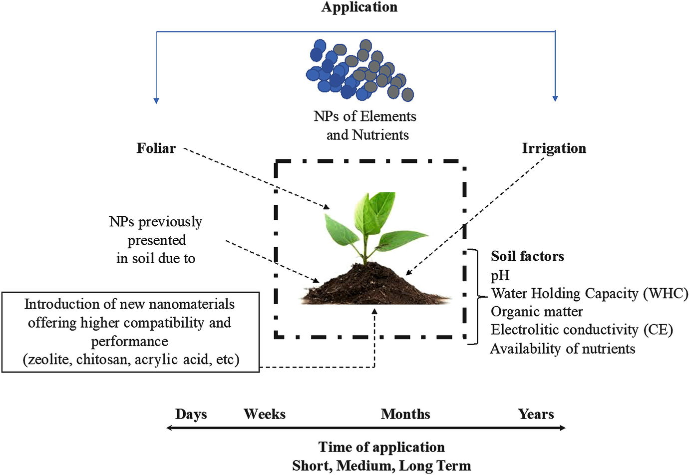 Incorporation of Nanoparticles into Plant Nutrients: The