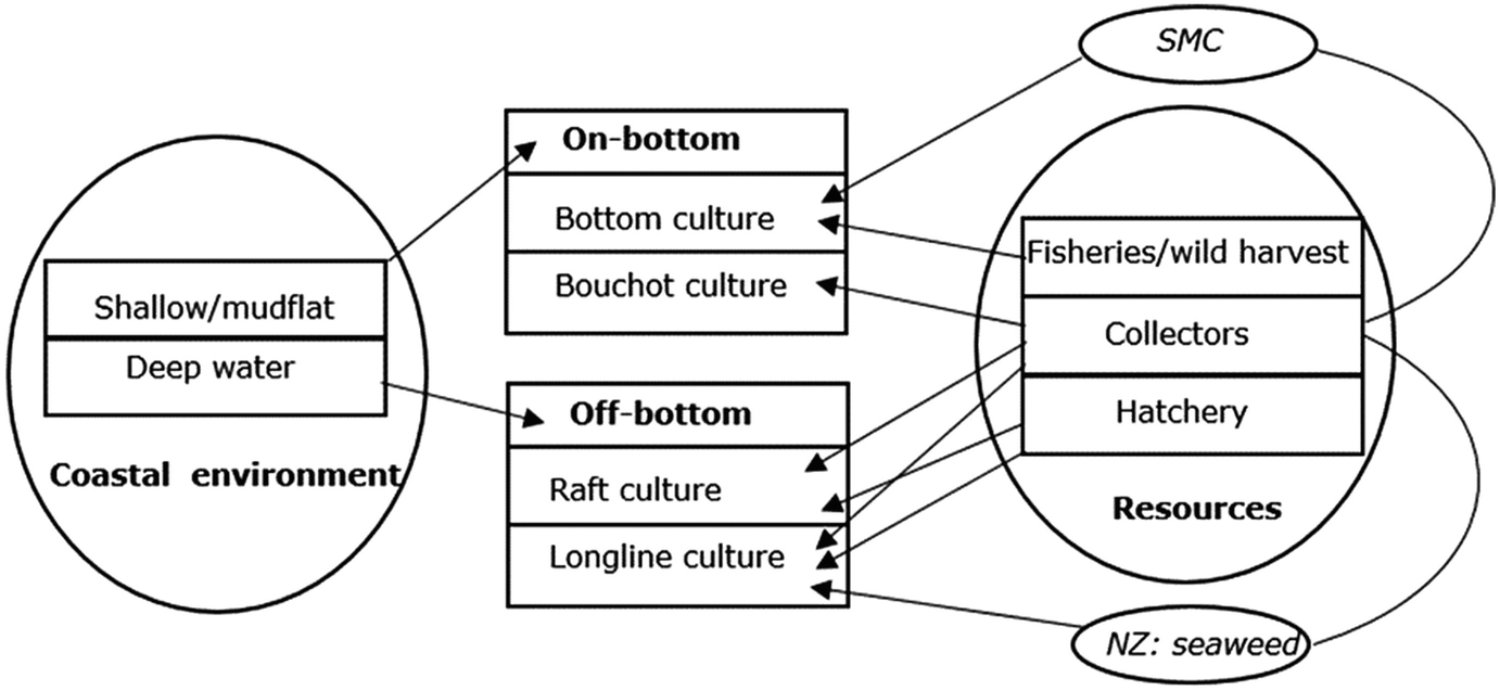 Provisioning of Mussel Seed and Its Efficient Use in Culture