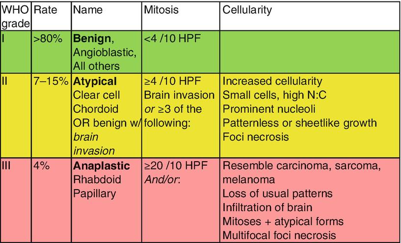 Central Nervous System Cancers | SpringerLink