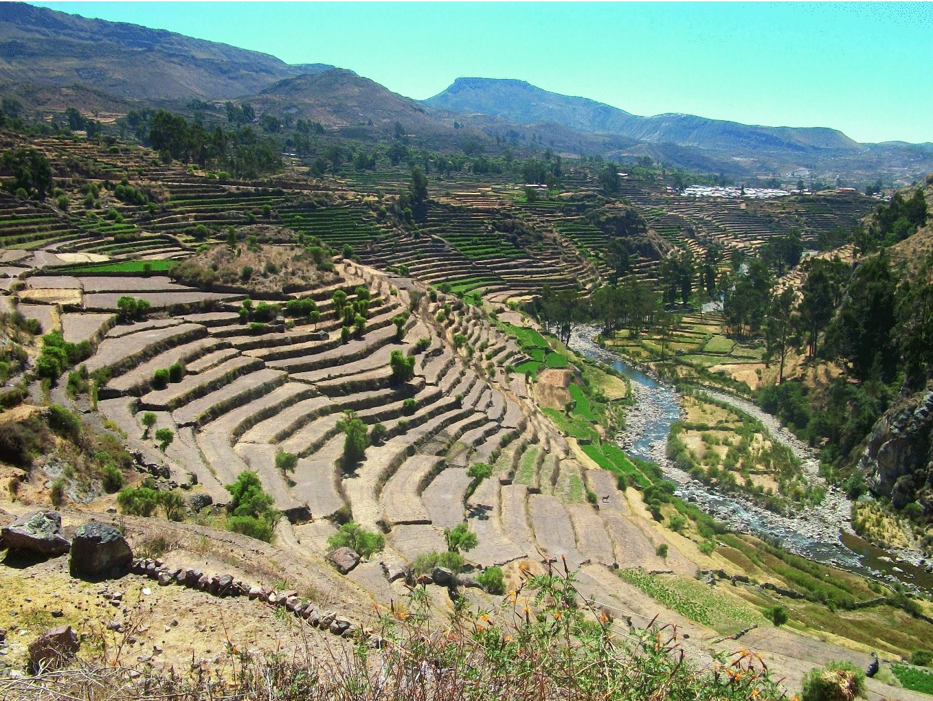 Terraced Landscapes In Perù Terraces And Social Water