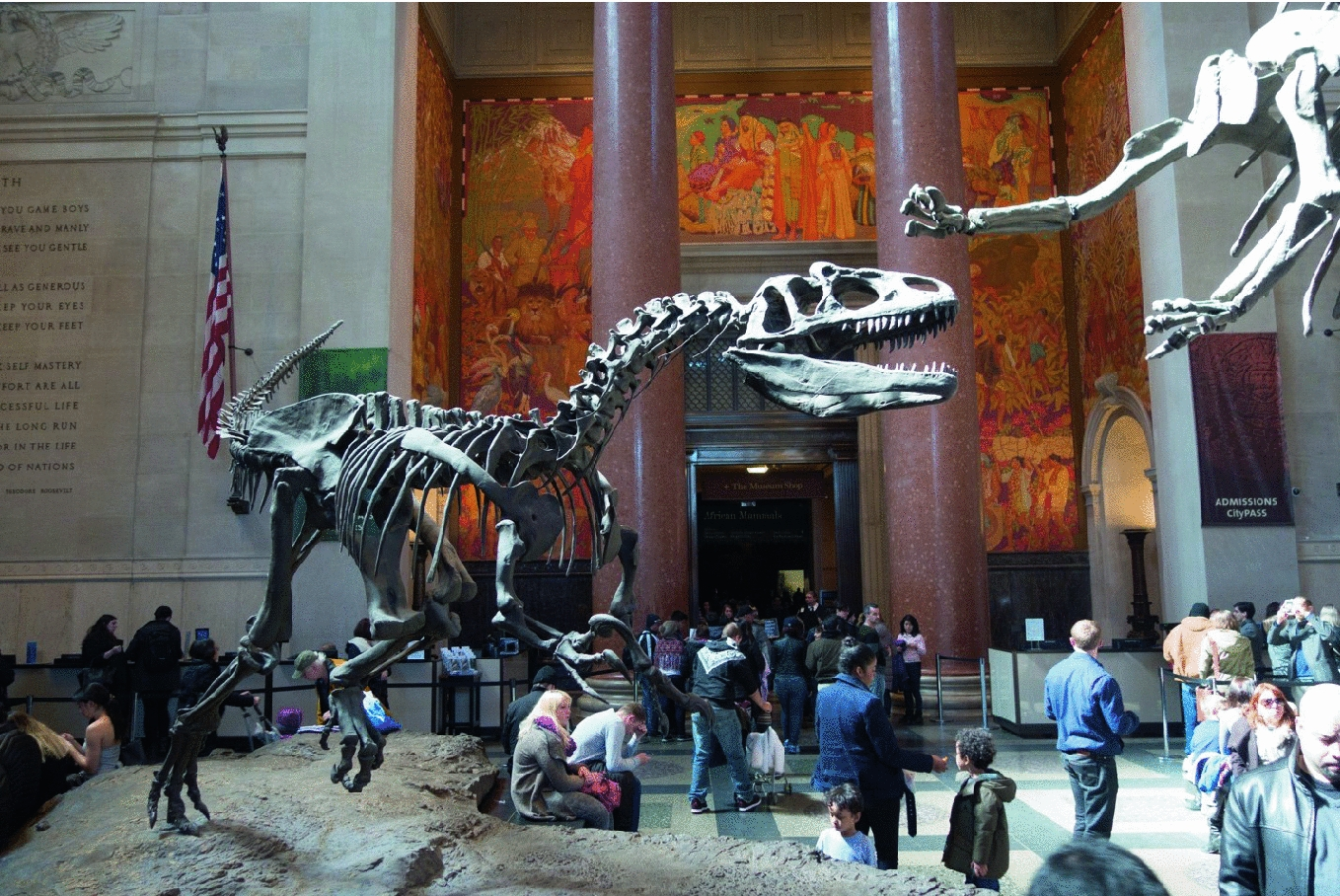 The Digital Layer in the Museum Experience | SpringerLink