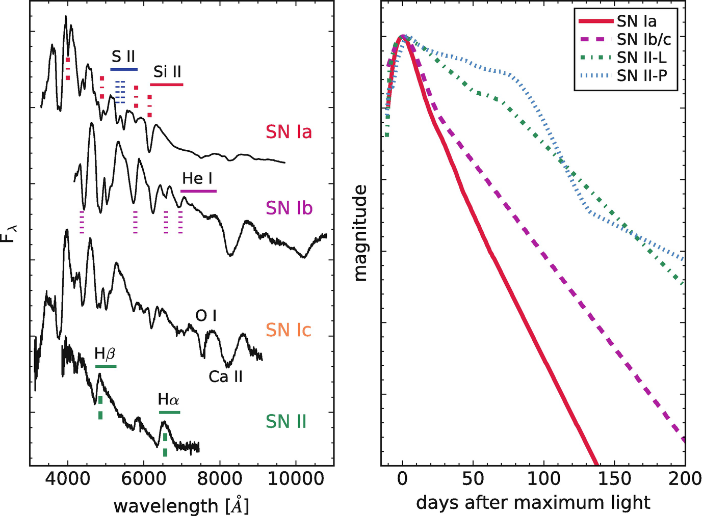 Neutron Stars Formation and Core Collapse Supernovae | SpringerLink