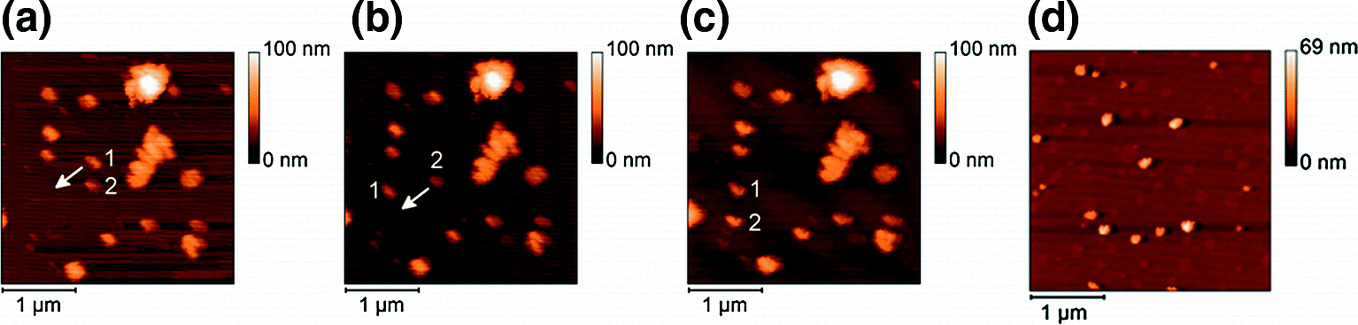 new york official shop in stock Nanophotonic Advances for Room-Temperature Single-Photon ...