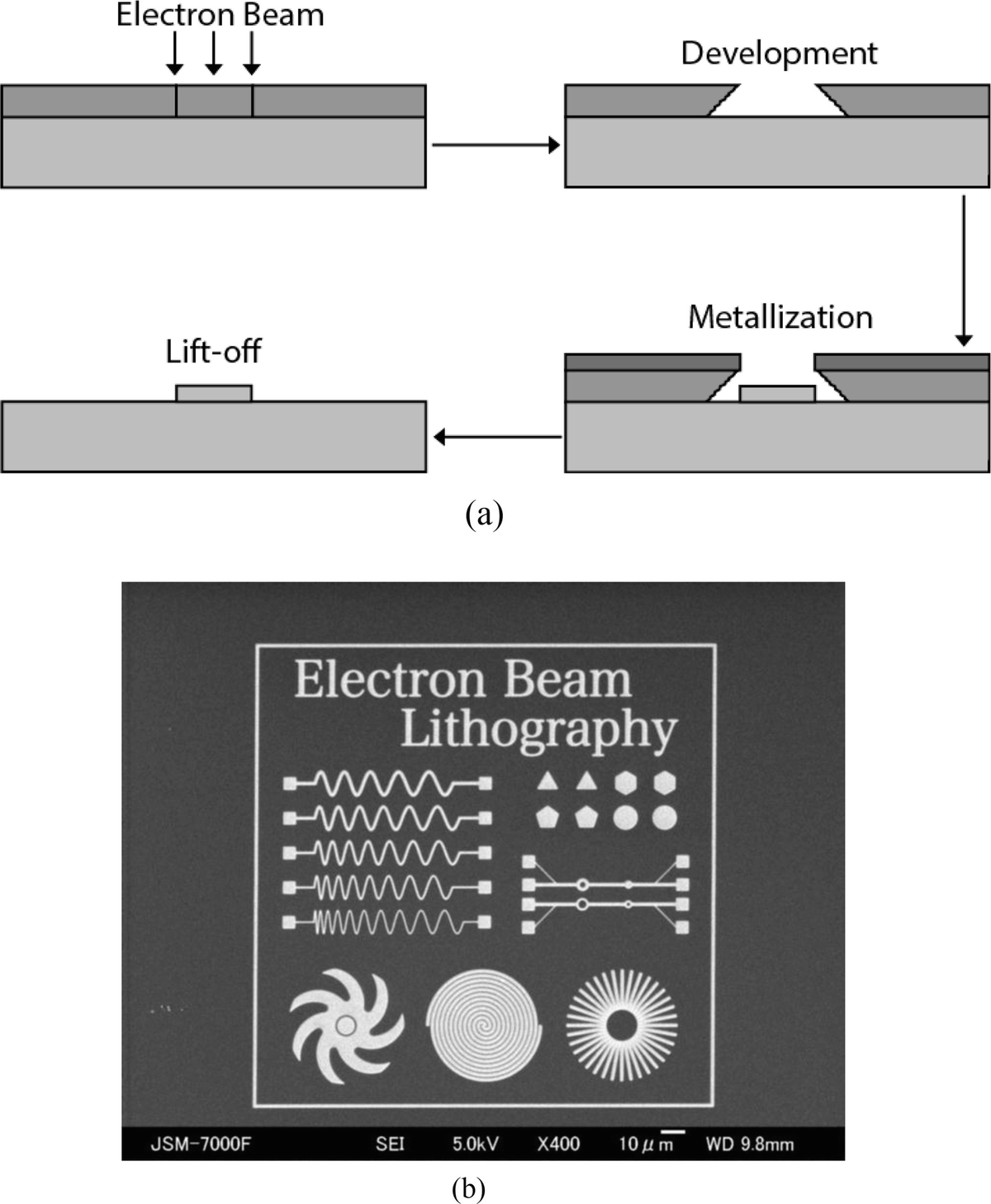 Specialized Sem Techniques Springerlink Tree Likewise Metal Detector Circuit On Schematic Pdf Open Image In New Window